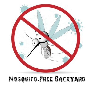 Your Mosquito-Free Yard